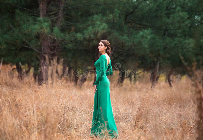 Lady in a luxury lush emerald dres royalty free stock photography