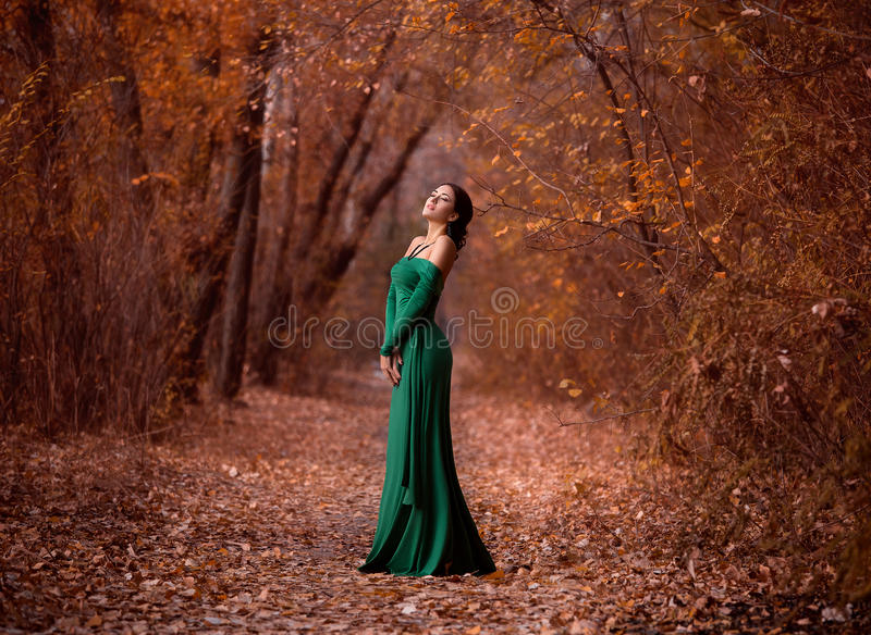 Lady in a luxury lush emerald dres stock photo