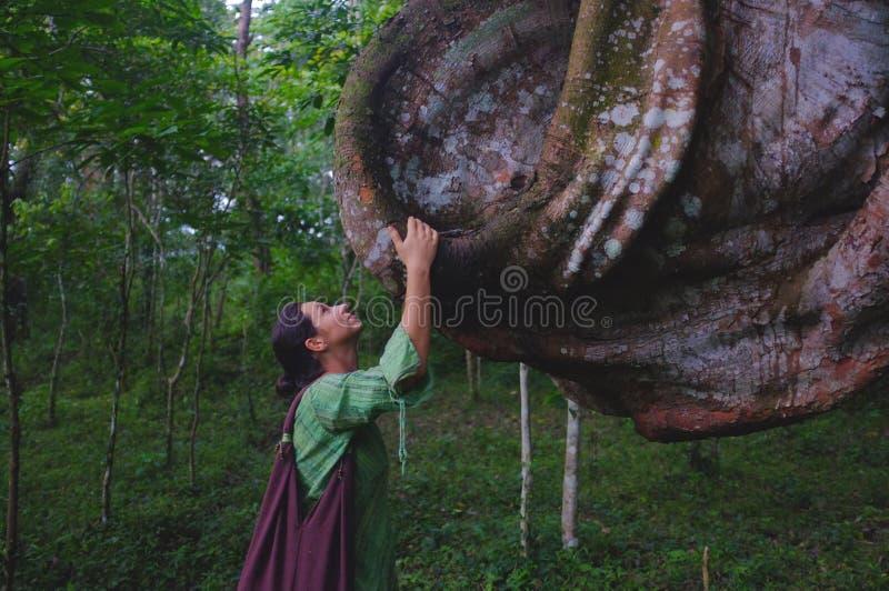 Lady och tree royaltyfri bild