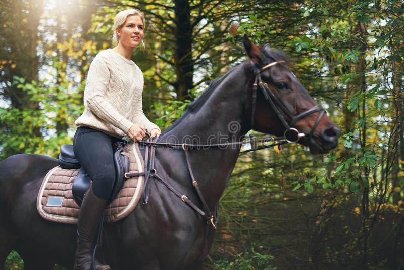 Lady riding a brown horse in park stock photo