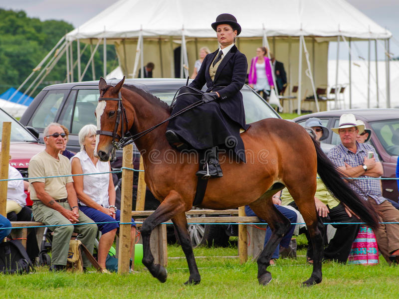 Lady riding side saddle. A lady riding in the side saddle class at the North Lonsdale Agricultural Show stock photography