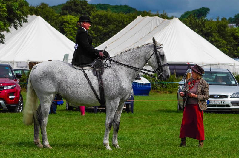 Lady riding side saddle. A lady riding side saddle at the North Lonsdale Agricultural show royalty free stock images