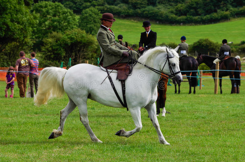Lady riding side saddle. A lady riding side saddle at the North Lonsdale Agricultural show stock photos