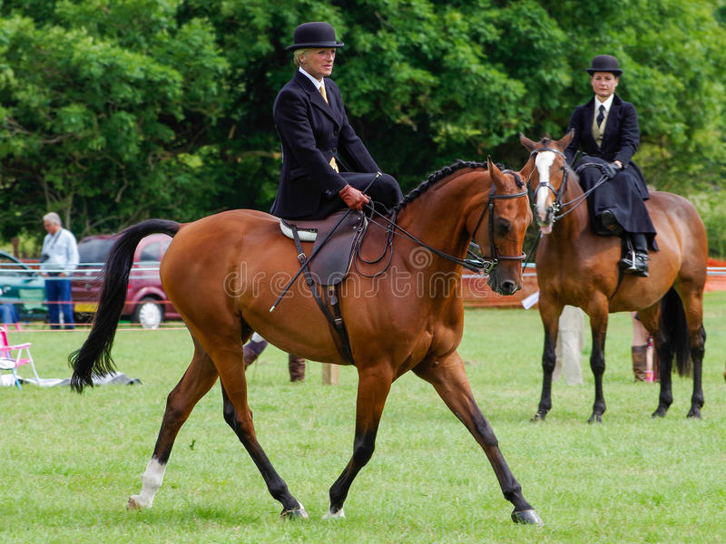 Lady riding side saddle. A lady riding side saddle at the North Lonsdale Agricultural show stock image
