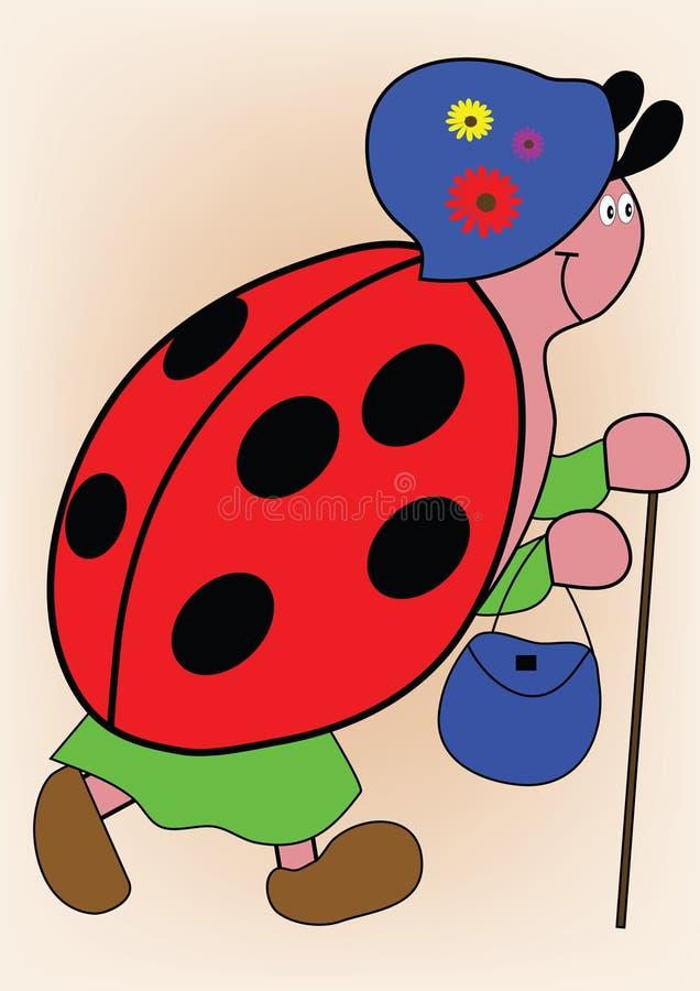 ladybird ilustracja wektor
