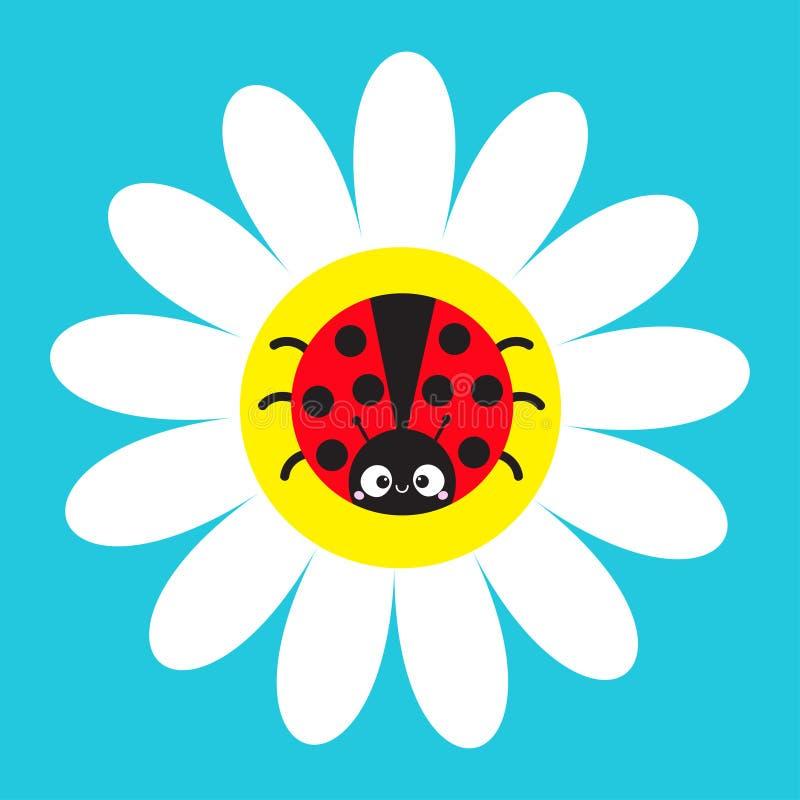 Ladybird biedronki insekta obsiadanie na białej stokrotki chamomile Rumianek ikona Śliczna dorośnięcie kwiatu rośliny kolekcja tł ilustracja wektor