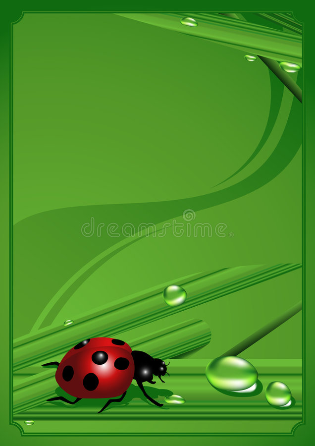 Ladybird_frame illustration stock
