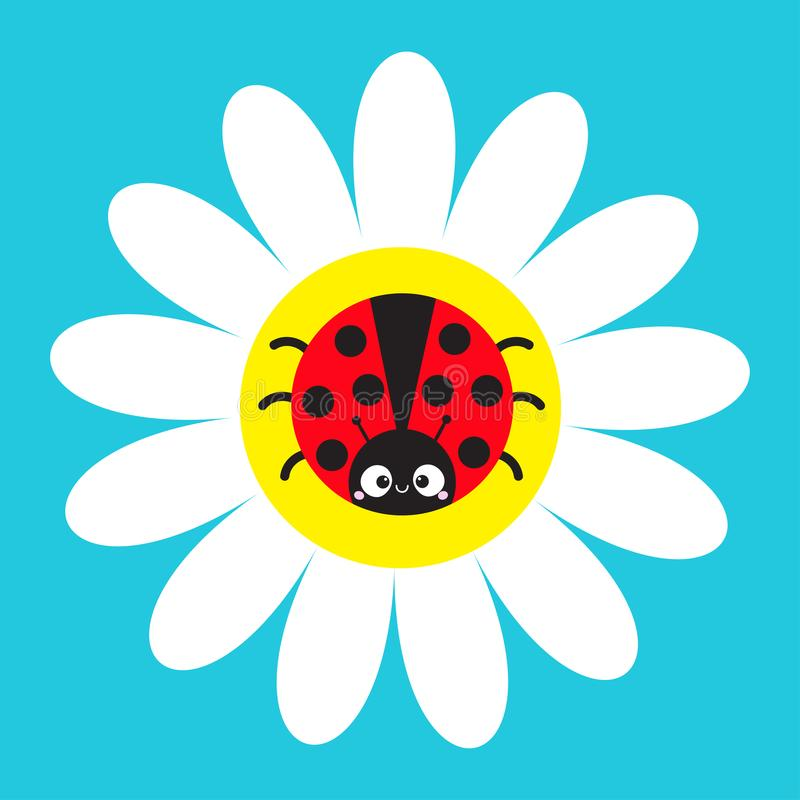 Ladybird Ladybug insect sitting on white daisy chamomile. Camomile icon. Cute growing flower plant collection. Cartoon character. Love card. Flat design. Blue vector illustration