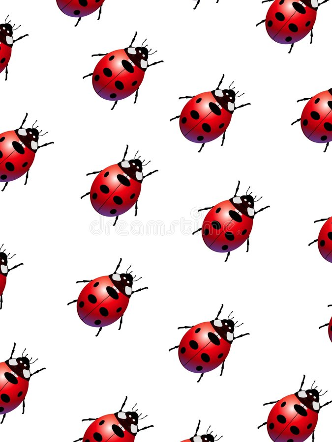 Free Ladybirds Stock Photos - 1147803