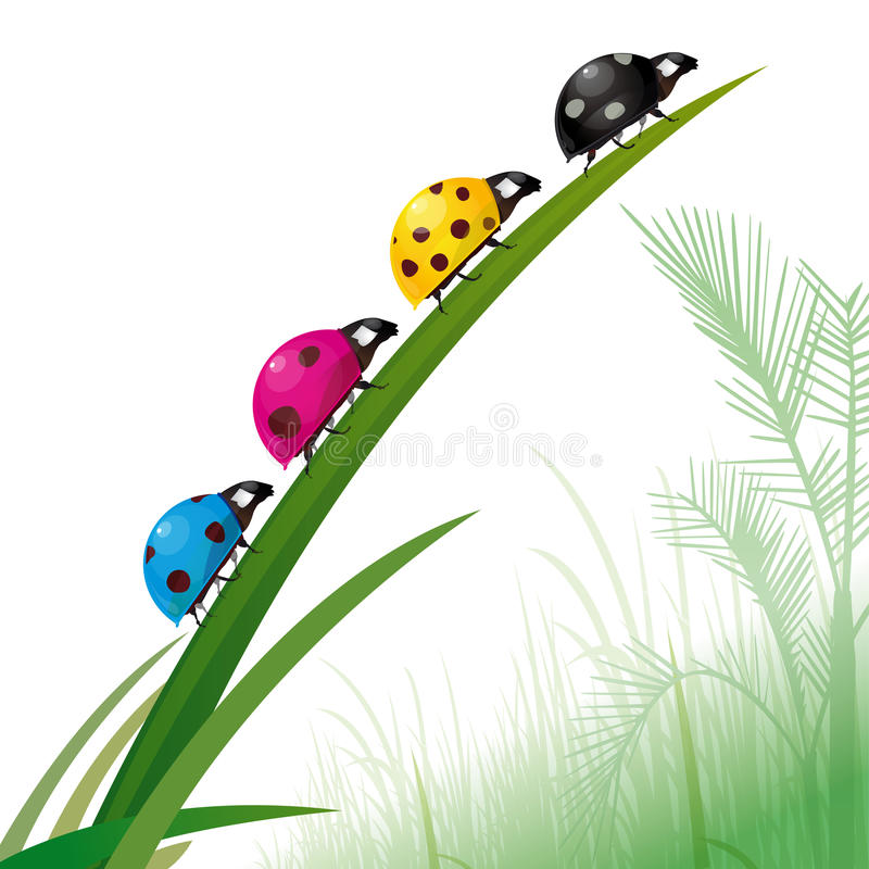 Free Ladybirds Color Printing Royalty Free Stock Photography - 17885627