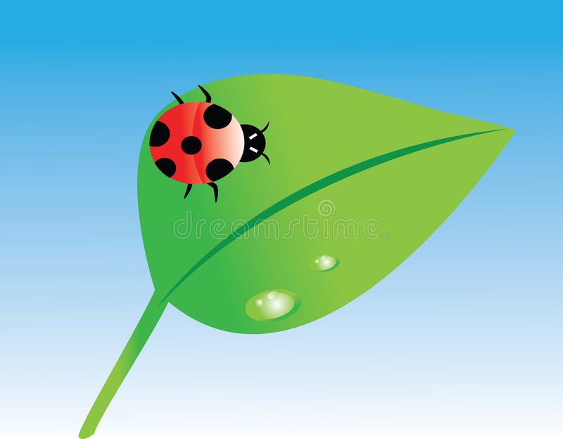 ladybug διάνυσμα διανυσματική απεικόνιση