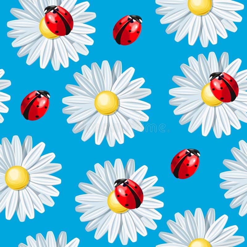 Ladybug και camomile άνευ ραφής απεικόνιση αποθεμάτων