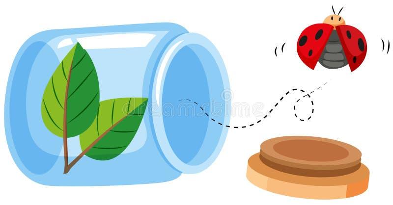 Ladybug που πετά από το βάζο ελεύθερη απεικόνιση δικαιώματος