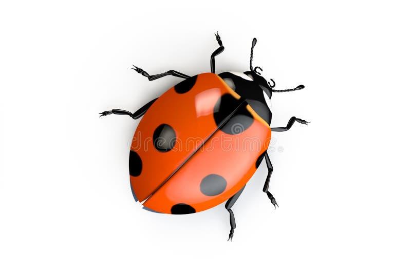 Ladybug на белой предпосылке иллюстрация штока
