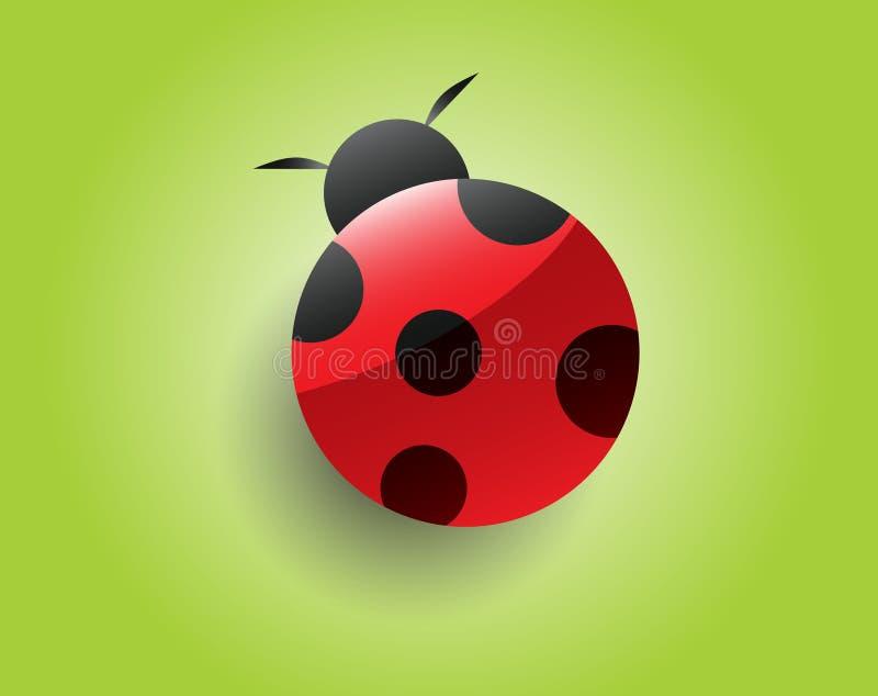 Ladybug. Beautiful ladybug on green background vector illustration