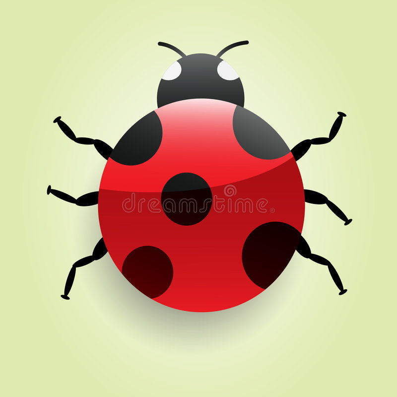 Download Ladybug stock vector. Image of insect, shiny, cartoon - 6476503