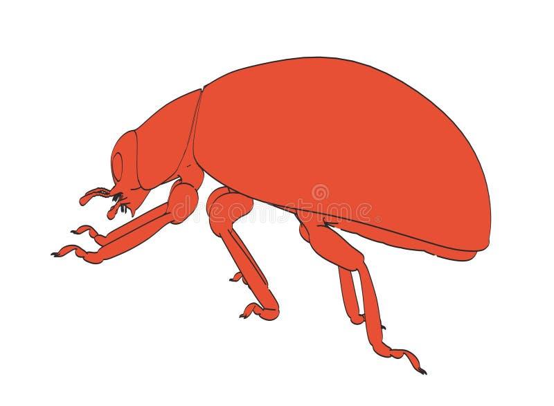 02 ladybug απεικόνιση αποθεμάτων
