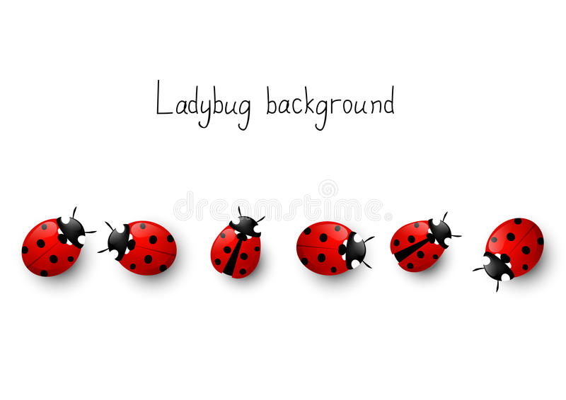 Ladybug background stock illustration