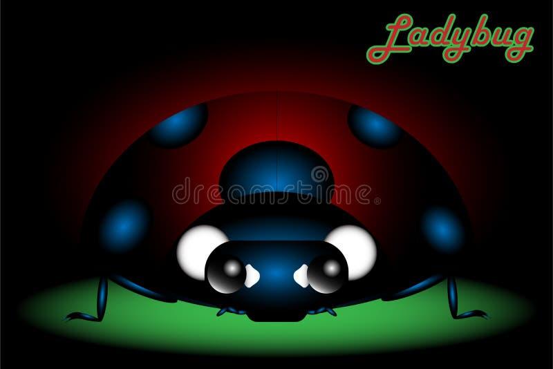 Ladybug in dark shade shadow royalty free stock photography