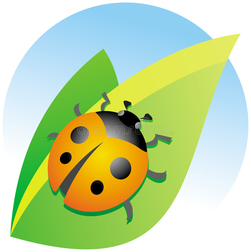 Download Ladybug On A Green Leaf Royalty Free Stock Photo - Image: 7802445