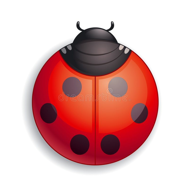 Ladybug icon royalty free illustration