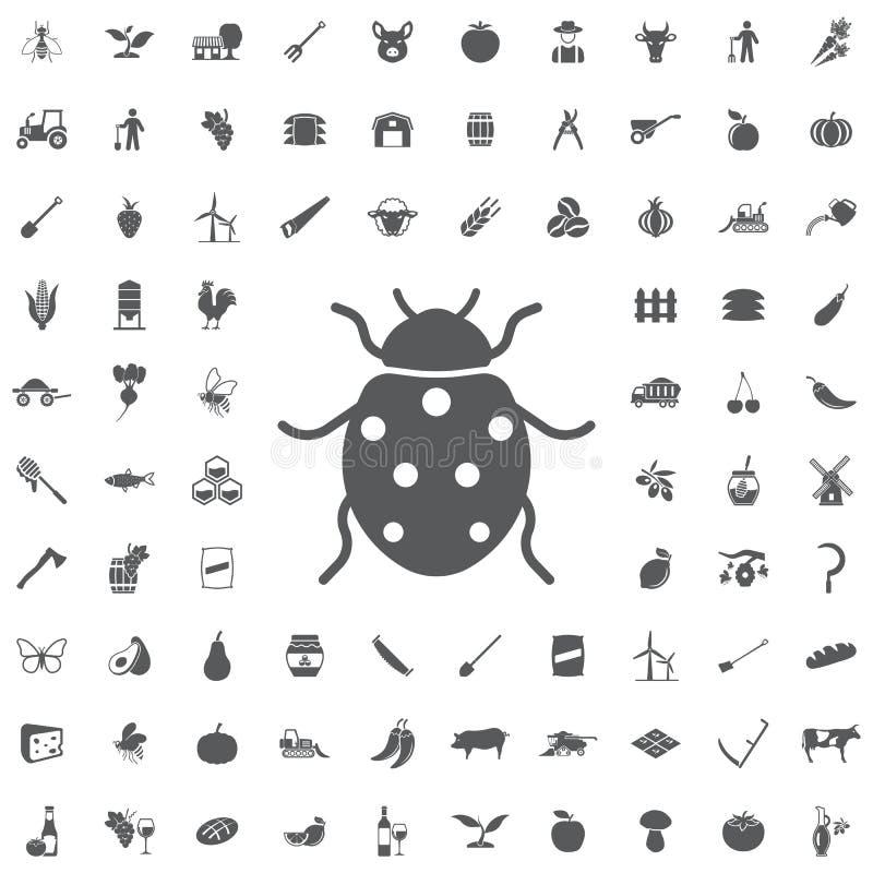 Ladybug icon. Ladybug icon on the white background. Set of farmer icons vector illustration