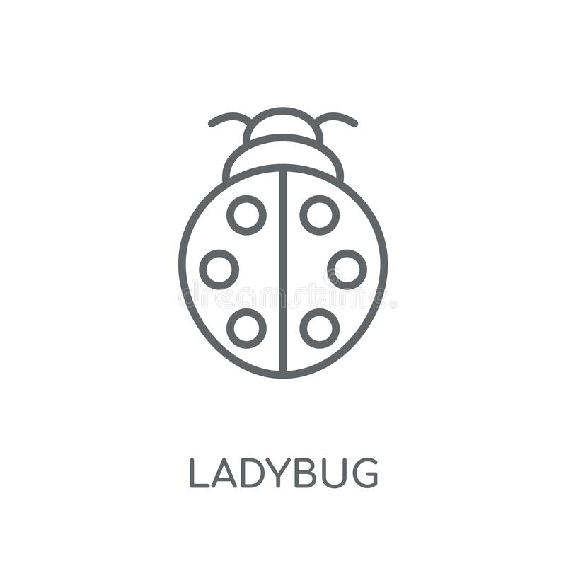 Ladybug linear icon. Modern outline Ladybug logo concept on whit. E background from animals collection. Suitable for use on web apps, mobile apps and print media royalty free illustration