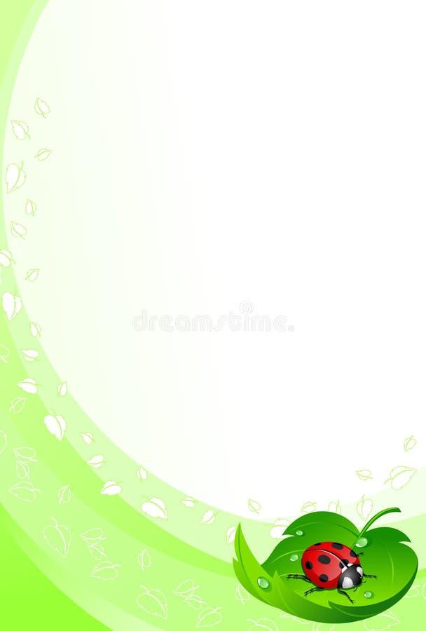 Ladybug no fundo da folha ilustração stock