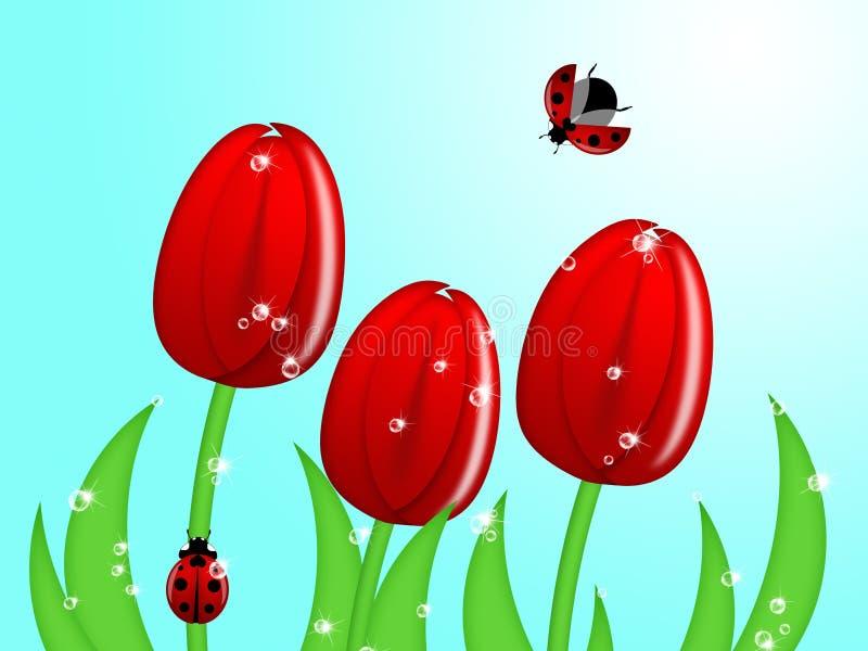 Ladybug que sube para arriba el vástago de la flor del tulipán libre illustration