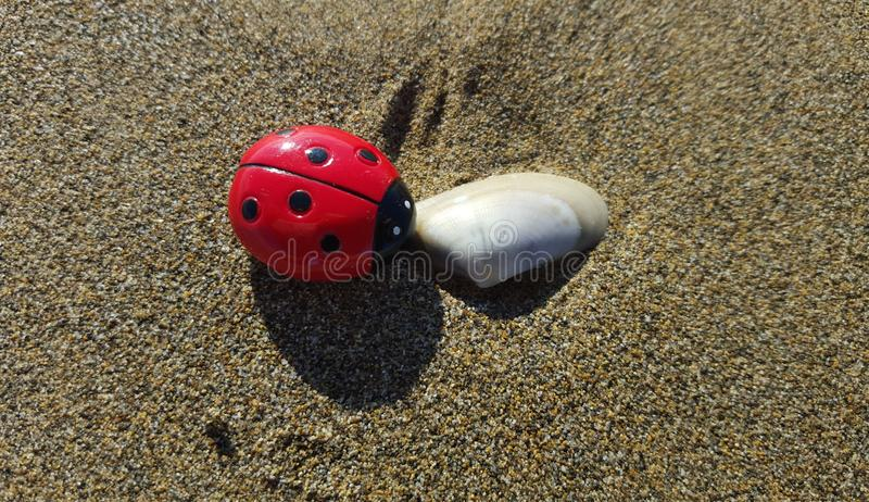 Ladybug story: weekend on he beach stock images