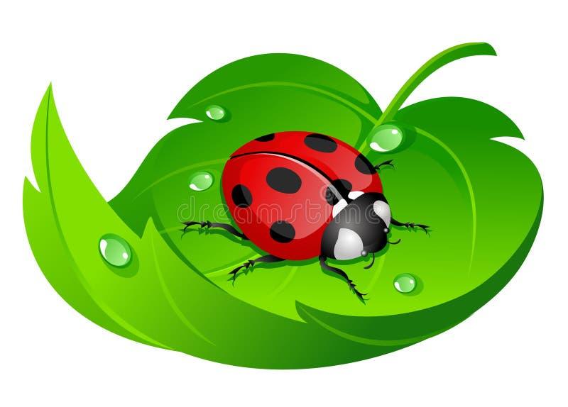 Ladybug sul foglio royalty illustrazione gratis