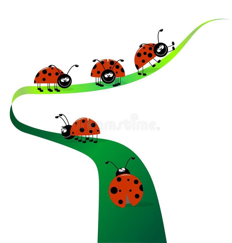 ladybugs иллюстрация штока