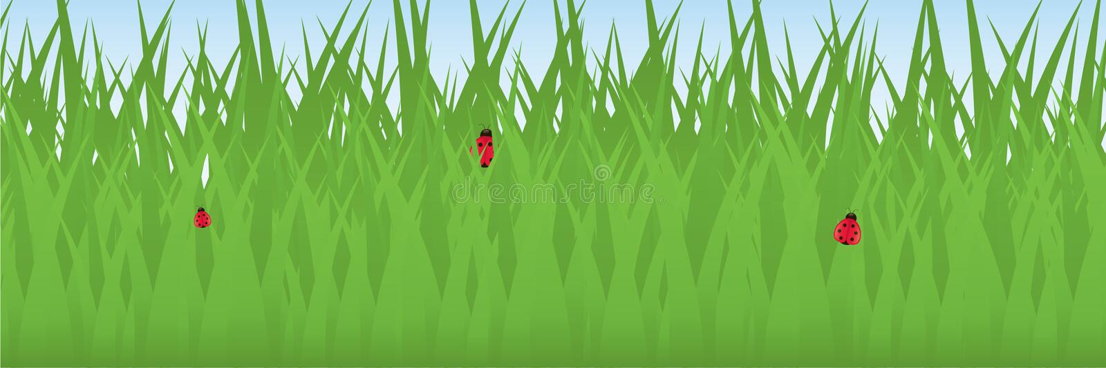 Ladybugs In Grass Royalty Free Stock Photo