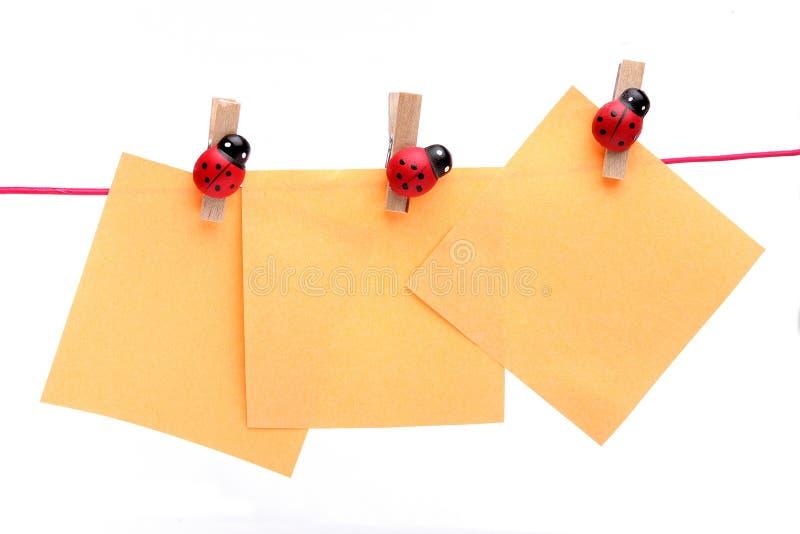 Ladybugs holding notes royalty free stock photo