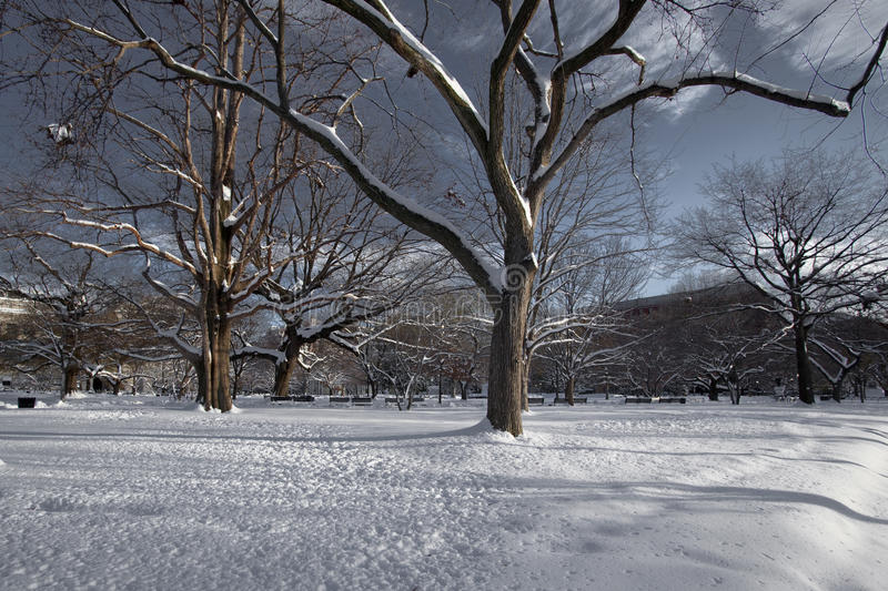 Lafayette Square royalty free stock photos