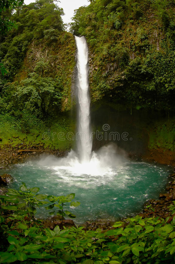 Lafortuna-Wasserfall, Costa Rica stockfotos