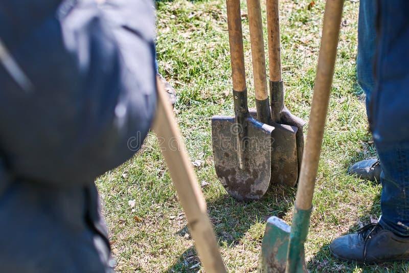 Lag av arbetare som är klara att starta plantera träd med deras skyfflar, teamworkbegrepp arkivbild