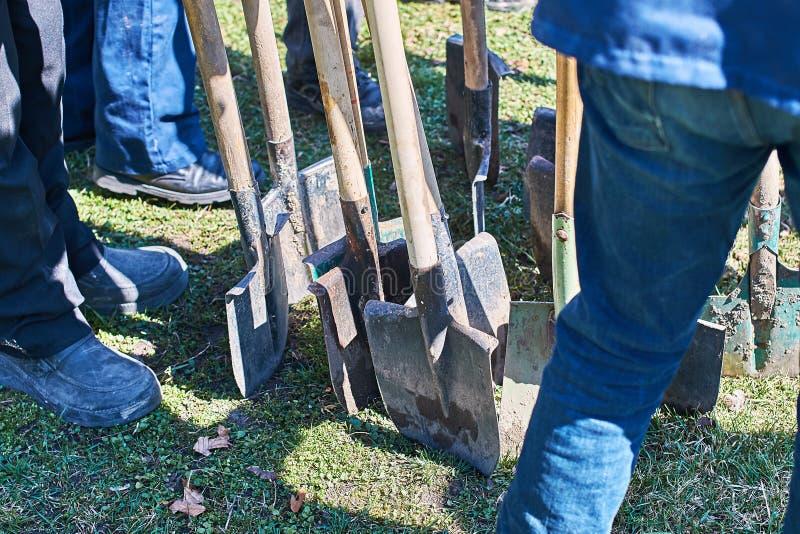 Lag av arbetare som är klara att starta plantera träd med deras skyfflar, teamworkbegrepp royaltyfria bilder