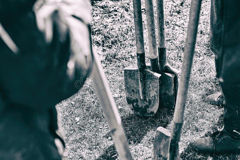 Lag av arbetare som är klara att starta plantera träd med deras skyfflar, teamworkbegrepp arkivfoto