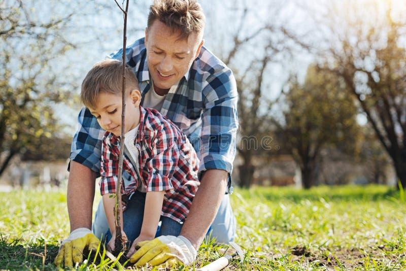 Lag av två manliga familjemedlemmar som tillsammans arbeta i trädgården royaltyfri foto