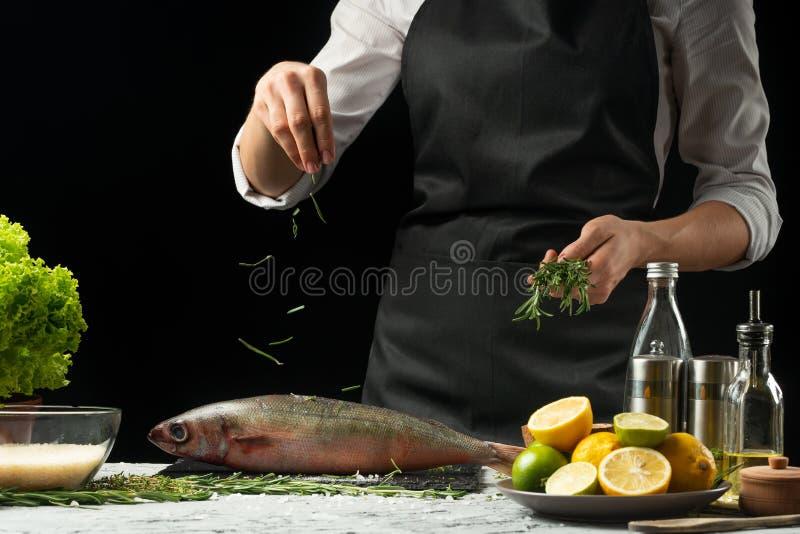 laga mat chefen av ny fisk, strilar kocken den krydda fisken på en svart bakgrund med citroner, limefrukter, rosmarin och thym arkivfoton