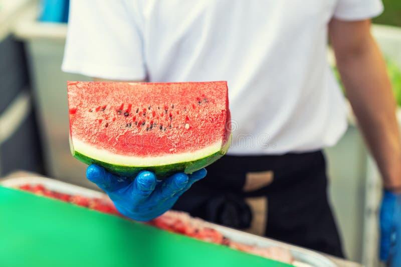 Laga mat i gummihandskar som rymmer i hand och erbjudande stort stycke av den nya smakliga saftiga skivade vattenmelon för hotell arkivbilder