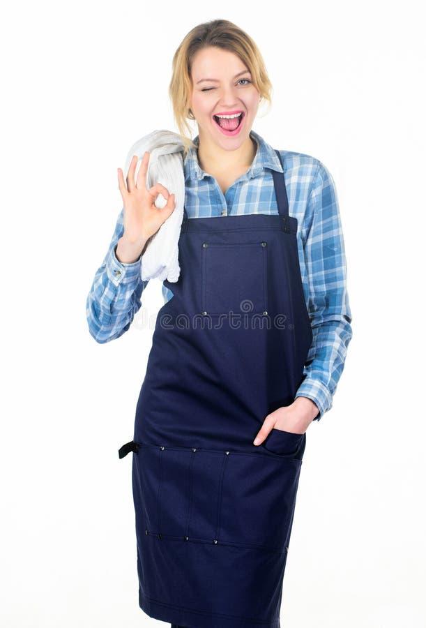 Laga mat kött parkera in Grillfestförlage Skjorta och förkläde för kvinna rutig för att laga mat vit bakgrund Picknick och grillf arkivfoto