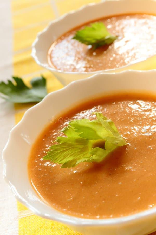 Laga mat med grädde soup med sellerit royaltyfria bilder