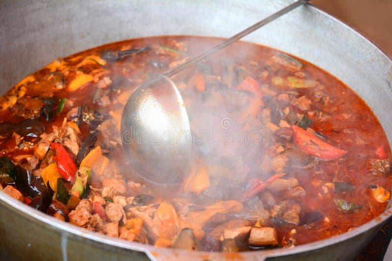 Laga mat ungersk nationell bograch för matgulaschsoppa i en bunke och ingredienser royaltyfri fotografi