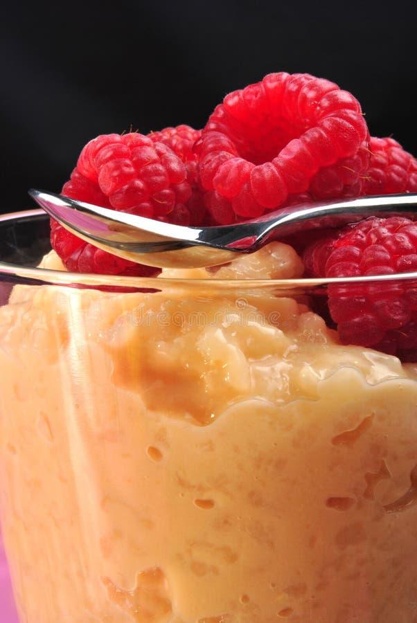 lagad mat med grädde puddinghallonrice arkivbild