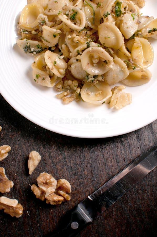 Lagad mat pasta med valnötsås arkivbilder