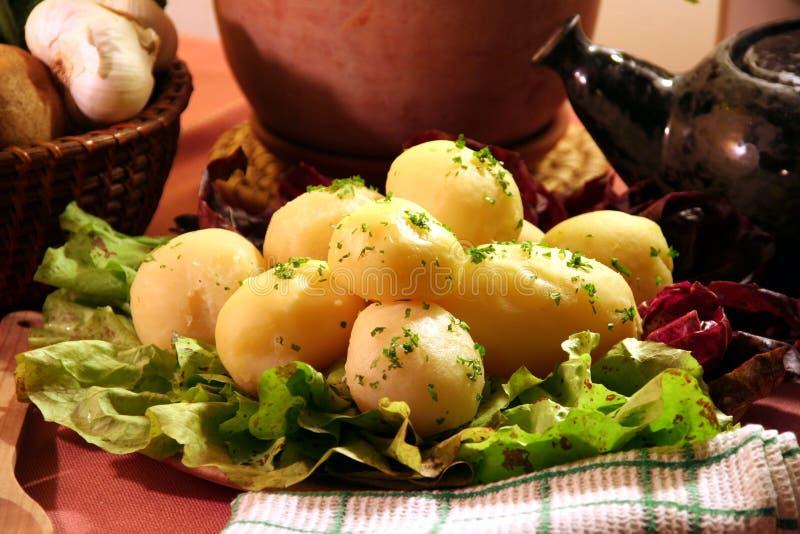 lagad mat potatis royaltyfria bilder