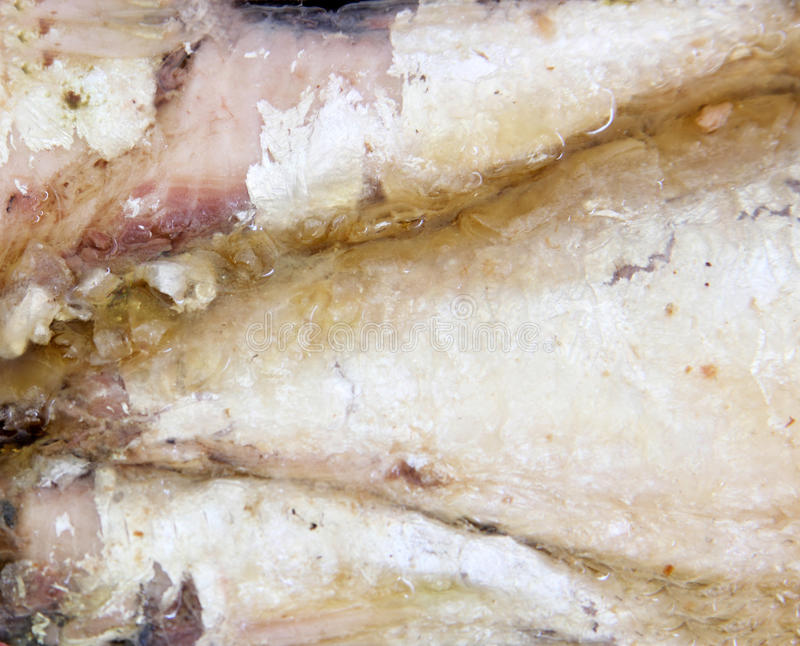 Lagad mat sardin fotografering för bildbyråer