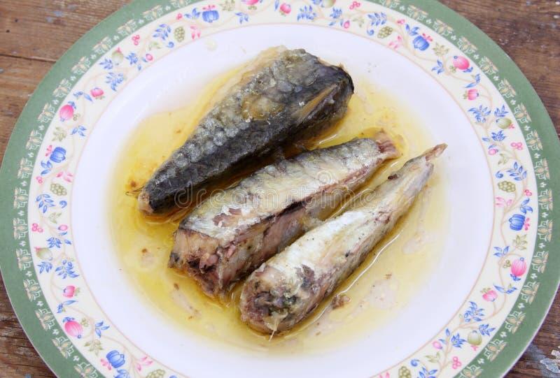 Lagad mat sardin royaltyfri bild